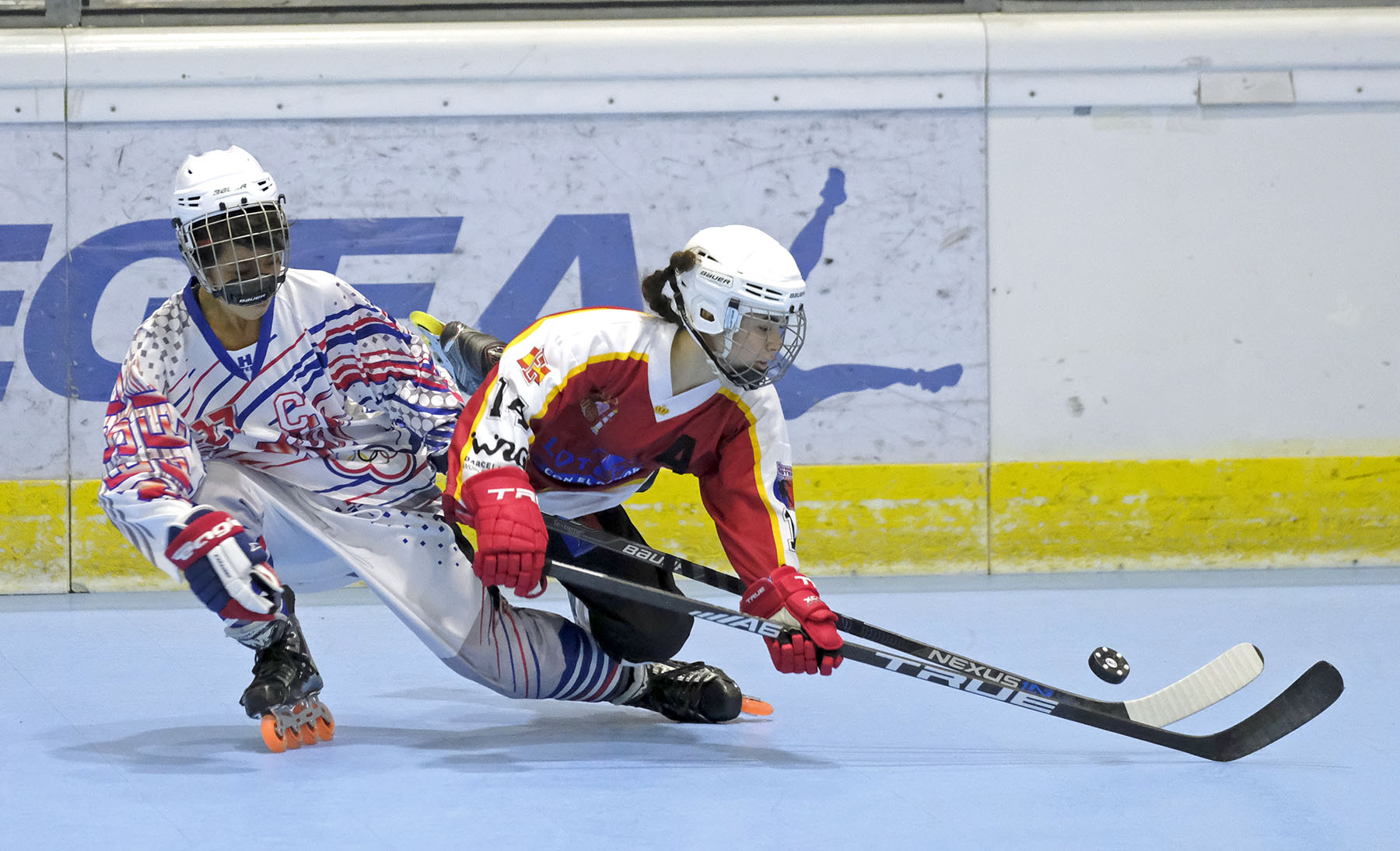 Image result for inline hockey
